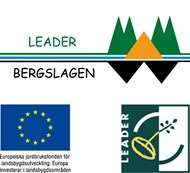 sammansatt_logo_leader copy